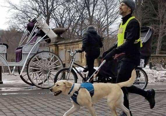 תומאס פאנק בריצה עם כלב נחייה