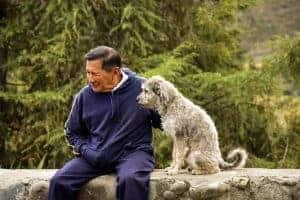 קשיש עם כלבו