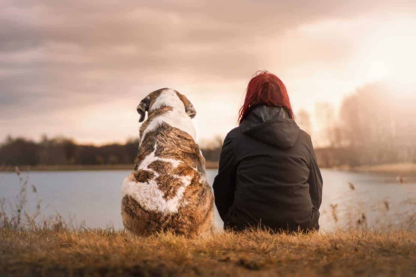 אישה לצד כלב