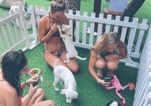 צעירות משחקות עם גורים