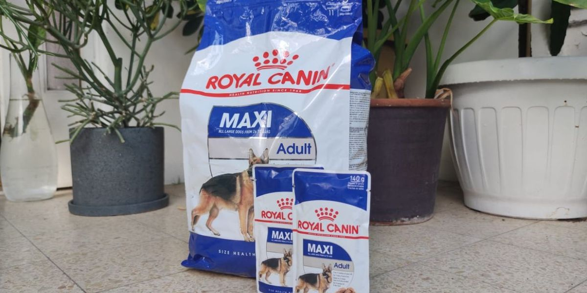 מזון משולב לכלבים של רויאל קנין